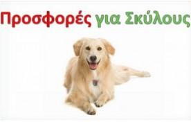 Προσφορές για Σκύλους