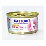 RENAL / KIDNEY ΚΟΤΟΠΟΥΛΟ